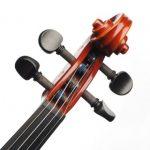 Đàn Violin Suzuki FS-10